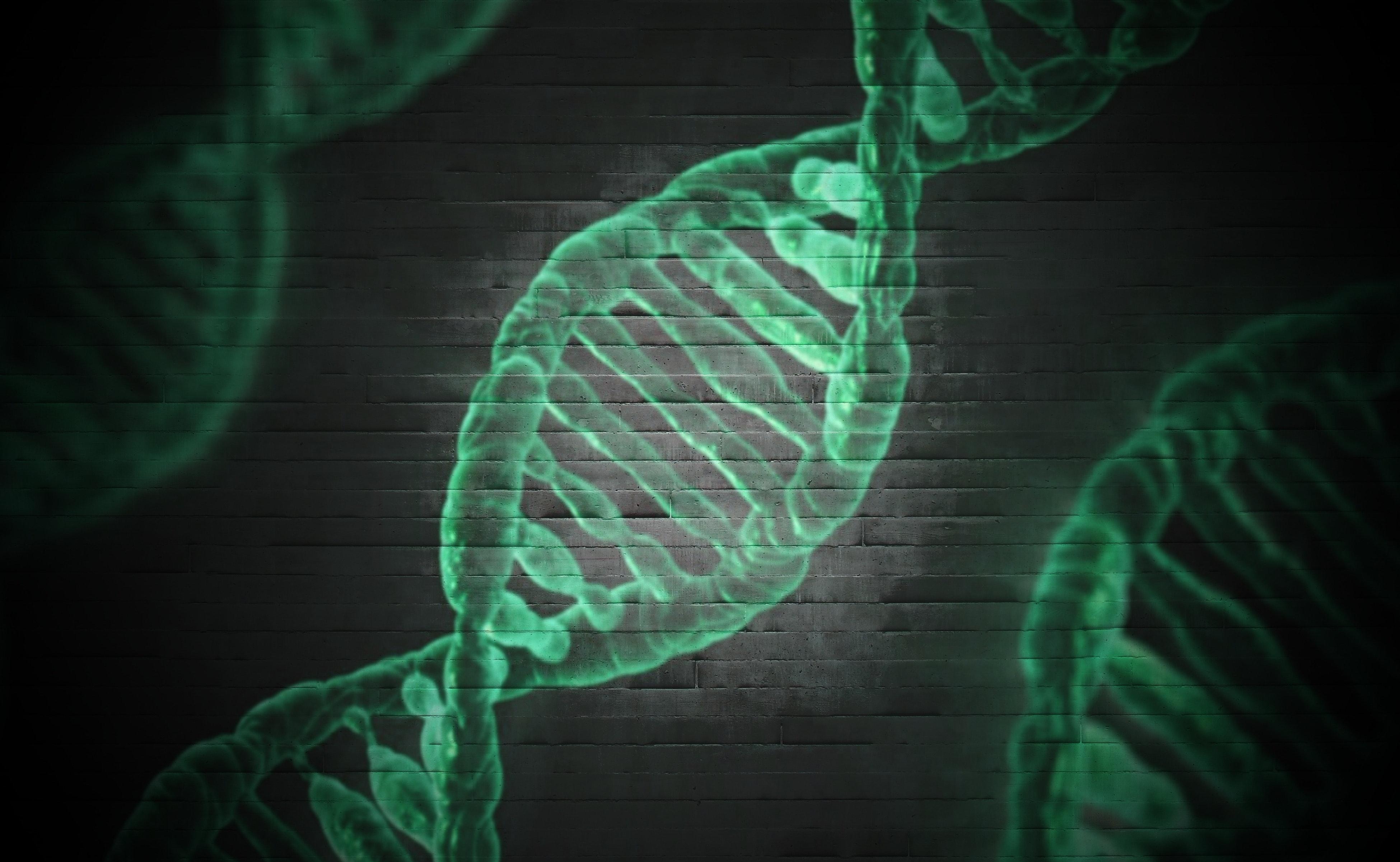 Dna genetischer code.2752df2e42711d5d6502e3a1197b9ac8f