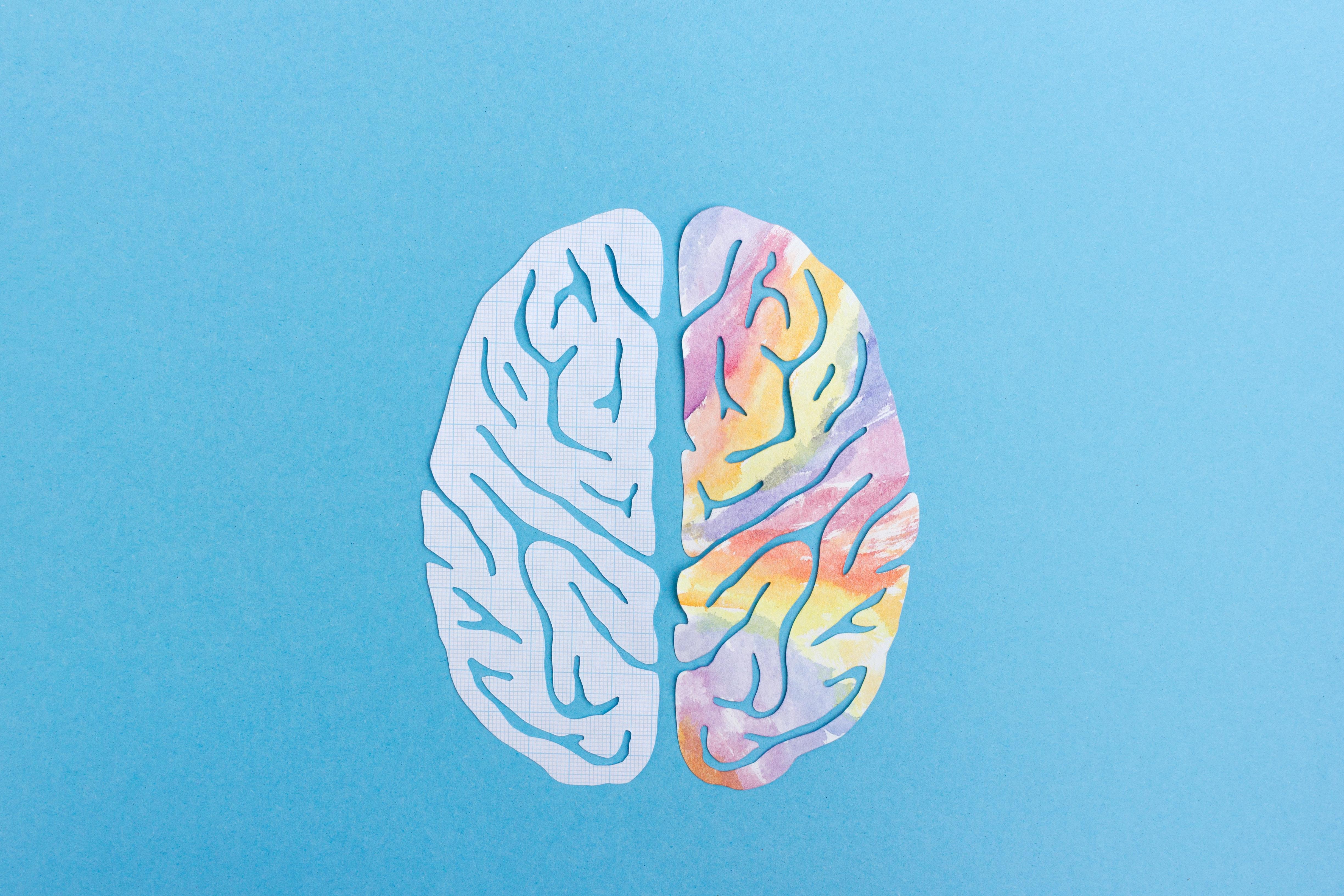 Gehirn symbolbild aufgaben professur.01e0e27e4f134a82a4d2c13edd9725c03
